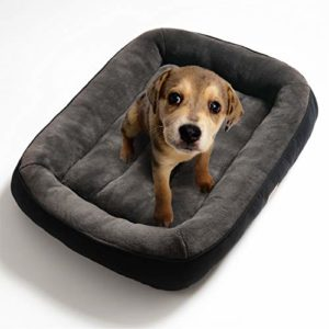 bedsure plush dog bed s/m/l/xl- soft machine washable pet bolster bed for large dogs up to 45 kg Bedsure Plush Dog Bed Extra Large- Machine Washable Pet Bolster Bed for Large Dogs Up to 45 KG, Black, 110x76x18cm Bedsure Plush Dog Bed SMLXL Soft Machine Washable Pet Bolster Bed for Large Dogs Up to 45 KG 0 300x300