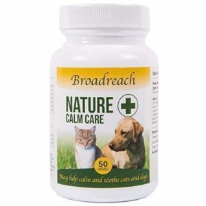 broadreach nature + calm care for dogs and cats - award winning product! - advanced veterinary formula - natural ingredients - to support stress and anxiety- 50 caps Broadreach Nature + CALM CARE FOR DOGS AND CATS – AWARD WINNING PRODUCT! – Advanced Veterinary formula – Natural… Broadreach Nature CALM CARE FOR DOGS AND CATS AWARD WINNING PRODUCT Advanced Veterinary formula Natural Ingredients to support stress and anxiety 50 caps 0 300x300