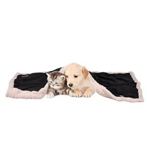 dog blanket, super soft warm fluffy sherpa fleece plush dog blankets for dogs puppy doggy pet cats double thickness throws Puppy Fleece Blankets, Washable Sherpa Fluffy Cosy Warm Plush Pet Blankets for Small Dog Cat Kitten Double Thickness… Dog Blanket Super Soft Warm Fluffy Sherpa Fleece Plush Dog Blankets for Dogs Puppy Doggy Pet Cats Double Thickness Throws 0 300x300