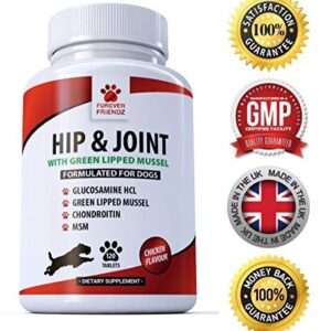 furever friendz hip & joint + green lipped mussels Advanced Hip and Joint Support for Dogs – Glucosamine, Chondroitin, MSM & GREEN LIPPED Mussels & Vitamin C – Canine 120… Furever Friendz Hip Joint Green Lipped Mussels 0 300x300
