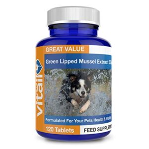 green lipped mussel for dogs, 500mg. 120 tablets. formulated for your dogs health and vitality. Green Lipped Mussel for Dogs, 500mg. 120 Tablets. Formulated for Your Dogs Health and Vitality. Green Lipped Mussel for Dogs 500mg 120 Tablets Formulated for Your Dogs Health and Vitality 0 300x300