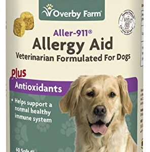 overby farm aller-911® allergy aid dog supplement | advanced allergy relief treats for pets | natural immune system, respiratory & healthy skin support | food supplement for dogs | 60 chews Overby Farm Aller-911® Allergy Aid Dog Supplement | Advanced Allergy Relief Treats for Pets | Natural Immune System… Overby Farm Aller 911 Allergy Aid Dog Supplement Advanced Allergy Relief Treats for Pets Natural Immune System Respiratory Healthy Skin Support Food Supplement for Dogs 60 Chews 0 296x300