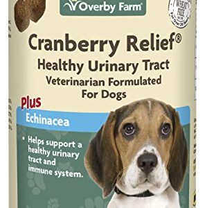 overby farm cranberry relief | all-natural uti treatment & bladder support for improved immunity & urinary health | tasty soft chews supplement to prevent infection for small to large dogs | 60 chews Overby Farm Cranberry Relief | All-natural UTI Treatment & Bladder Support For Improved Immunity & Urinary Health… Overby Farm Cranberry Relief All natural UTI Treatment Bladder Support For Improved Immunity Urinary Health Tasty Soft Chews Supplement To Prevent Infection For Small to Large Dogs 60 Chews 0 296x300