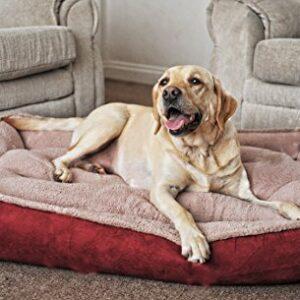 fleece cradle dog bed size extra large Fleece Cradle Dog Bed Size Extra Large Fleece Cradle Dog Bed Size Extra Large 0 300x300