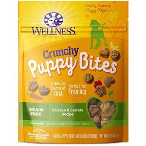 wellness crunchy puppy bites natural grain free puppy training treats, chicken & carrots, 6-ounce bag Wellness Natural Pet Food Grain-Free Crunchy Puppy Bites Chicken & Carrots Recipe Dog Treats, 6 Ounce Bag (89016) Wellness Crunchy Puppy Bites Natural Grain Free Puppy Training Treats Chicken Carrots 6 Ounce Bag 0 300x300