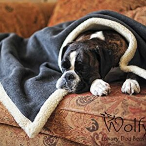 wolfybeds sherpa fleece pet blanket Wolfybeds Luxury Sherpa Fleece Pet Blanket (Medium) Wolfybeds Sherpa Fleece Pet Blanket 0 300x300